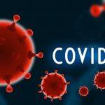 PMI Serbia Chapter announcement regarding COVID-19